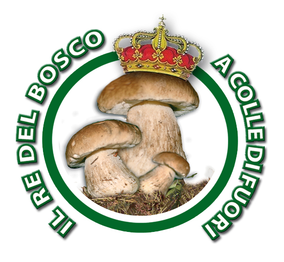 logo_fungo_ok