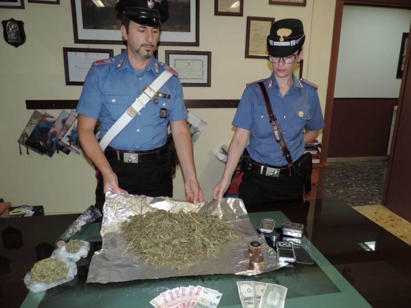 La marijuana sequestrata dai Carabinieri di Cave  (2)