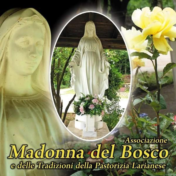 l'immagine della sacra Statua della Madonna del Bosco