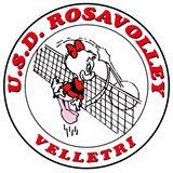 IL SIMBOLO DELLA ROSAVOLLEY VELLETRI