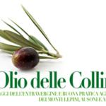 'L'Olio delle Colline': aperte le iscrizioni alla XIV edizione del Concorso Provinciale
