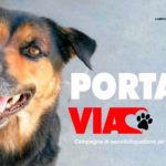 """""""Portami Via"""" la campagna di sensibilizzazione dell'Associazione Amici del Cane di Latina"""